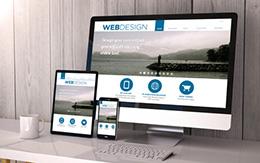 website consultation